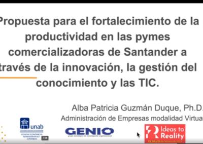 Alba P. Guzmán D.  Propuesta para el fortalecimiento de la productividad en las pymes comercializadoras de Santander a través de la innovación, la gestión del conocimiento y las TIC.