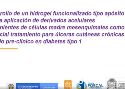 Silvia M. Becerra B.  Desarrollo de un hidrogel funcionalizado tipo aposito para la aplicación de derivados acelulares provenientes de celulas madres mesenquimales como potencial tratamiento para ulceras cutaneas cronicas : modelo pre-clínico en diabetes tipo I.