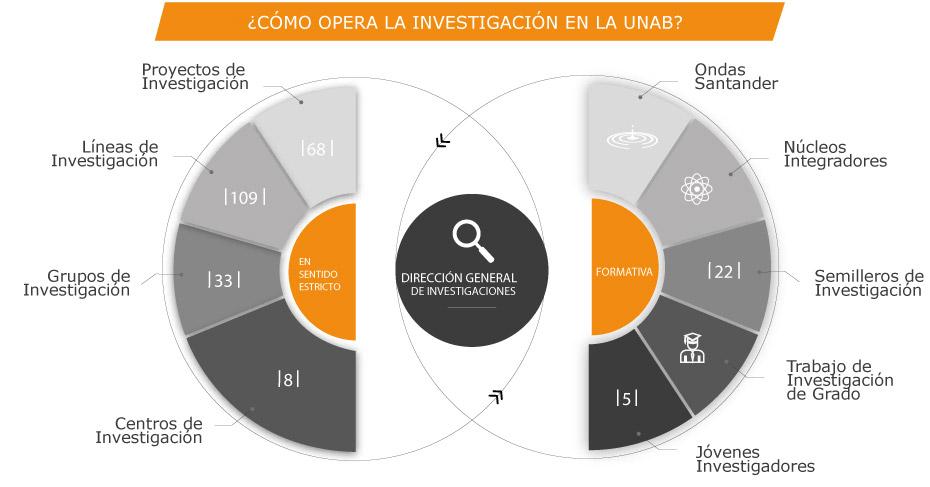 Estructura Organizacional Universidad Autónoma De